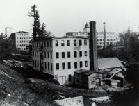 Factory that Stood Near Natural Spring, Springvale, ca 1900