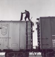 Ice reefer inspection, ca. 1959
