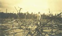 In the dry kie, Chesuncook Lake, 1911