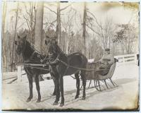 Horse and sleigh, Baldwin, ca. 1915