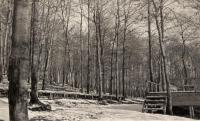 W. W. Thomas Park, New Sweden, ca. 1922