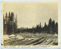 Logs, West Branch Penobscot, ca. 1920