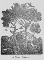 Woodblock Print by Jonathan Fisher