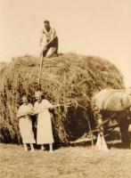 Bringing in the hay, Trone Farm, New Sweden, ca. 1930