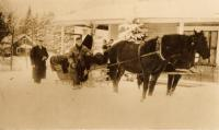 Horse and sleigh, New Sweden, ca. 1930