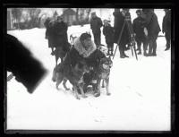 Kingiak with sled dogs, Poland Spring, 1927