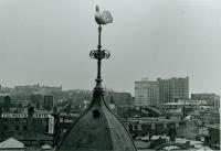 Weathervane, Portland, 1924
