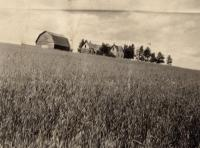 Carl Riderberg farm, Woodland, ca. 1922