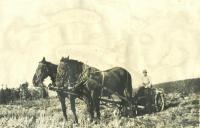Hoover paddle digger, Perham, ca. 1922