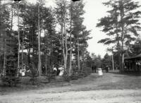 Park at Old Falls, Sanford, ca. 1908
