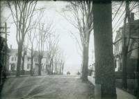 Ocean Street, South Portland, ca. 1900