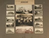 Nylander samlat 2, Woodland, 1922