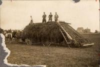 Tarr farm, Castle Hill, ca. 1910