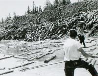 Logs awaiting the log drive, Ambajejus, ca. 1950