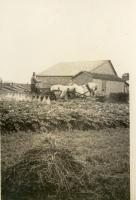King Farm, Presque Isle, ca. 1920