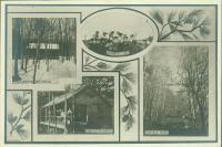 Outdoor features, Maine State Sanatorium, Hebron, ca. 1909