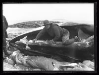 Removing the whalebone, Ragged Island, 1927