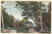 Fox Tail Curve, Yarmouth, ca. 1900
