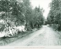 Road Near Aroostook River, Ft. Fairfield, 1895