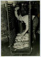 Workers, R.J. Peacock Canning Co., Lubec, ca. 1950