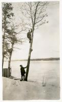 Gypsy moth control, Sebago, ca. 1935