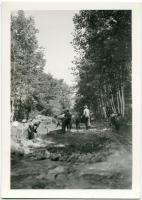 Road work, Bear Mountain, 1935