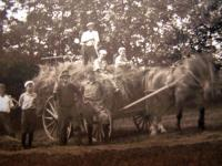 Islesboro Hay Wagon, ca. 1910