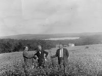 Orchard, Acton, ca. 1935