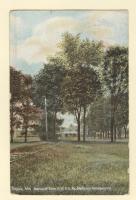 Avenue of Elms, Togus, ca. 1910
