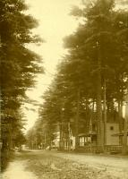 Temple Avenue, Old Orchard Beach, ca. 1910