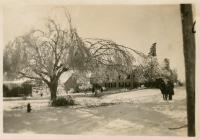 Ice storm, Lubec, 1919-20