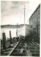 Peacock factory and sardine carrier, Lubec, ca. 1949