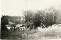 Summer Outing at Blue Hill Falls, ca. 1910