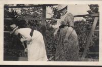 Croquet, Blue Hill, 1907