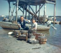 Clam digging, Scarborough, 1961
