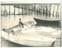 Herring weir leader, Lubec, ca. 1935