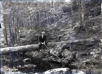 Uncle Charles Fishing, Saco, ca. 1900