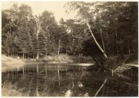 Martin Stream, Fairfield, ca. 1920
