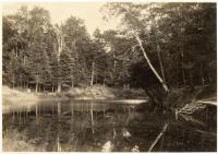 Martin Stream, Fairfield, ca. 1920