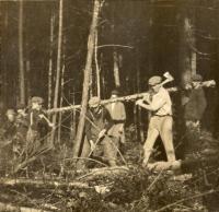 Cutting down trees, Fairfield, ca. 1920