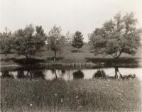 Bancroft-Foote Cottage and artificial pond, Fairfield, ca. 1935