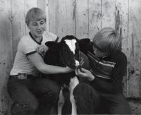 Good Will boys with calf, Fairfield, ca. 1960