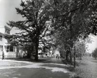 Cottage Row, Fairfield, ca. 1960