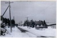 Sardine houses, North Lubec, ca. 1950