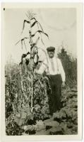 Walter Joyce comparing height of corn, Swan's Island, ca. 1930