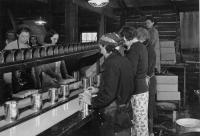 Filling whole ear cans, Fryeburg, ca. 1940
