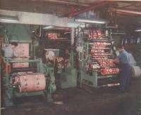 Royal Lace Paper workers, Brooklyn, N.Y., ca. 1951