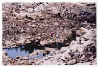 People in the drained pond, Swan's Island, 2003