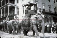 Parade of elephants in Lewiston