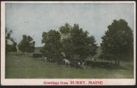 Greetings from Surry, Maine postcard, ca. 1923